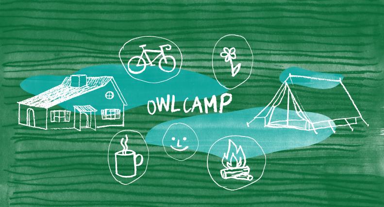owlcamp2