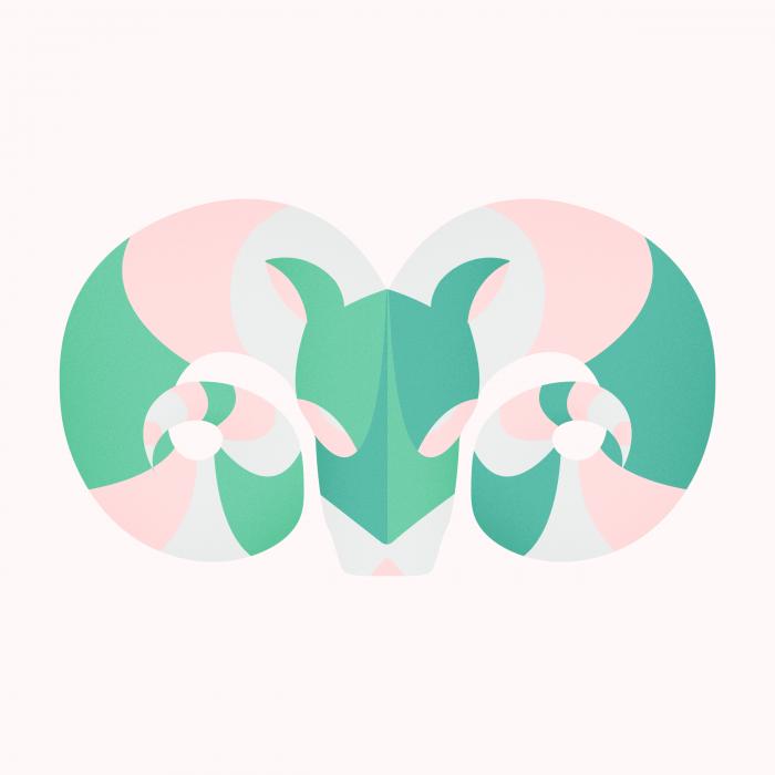 zodiaque-27