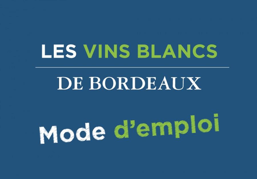 VINS_BLANCS_BORDEAUX_9