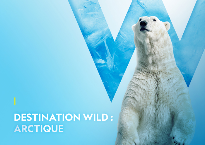 KEYART_destinationwild_arctique