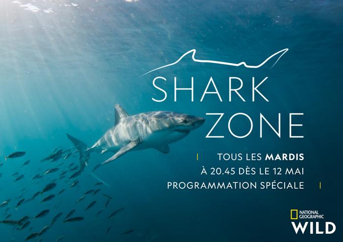 key_art_shark_zone_04_2020