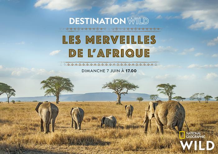 keyart_destinationwildmerveillesafrique_04_2020_1